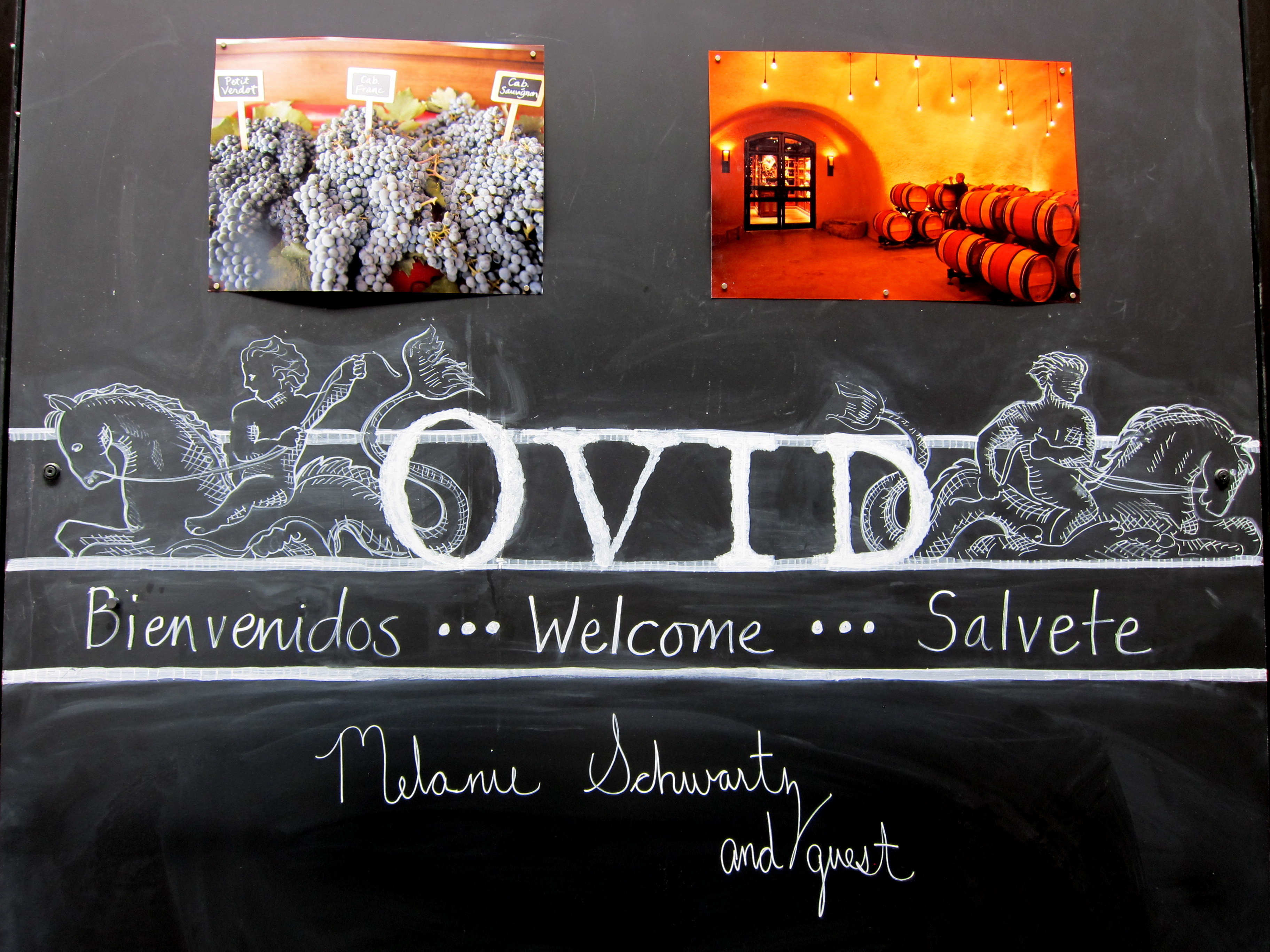 Ovid Wines Napa Valley - Booker and Butler Concierges