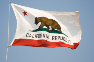 California State Flag - Booker and Butler Concierges