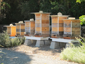 Stone Edge Farm Beehives - Booker and Butler Concierges
