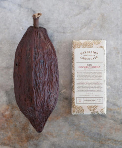 Cacao Pod for Chocolate - Booker and Butler Concierges